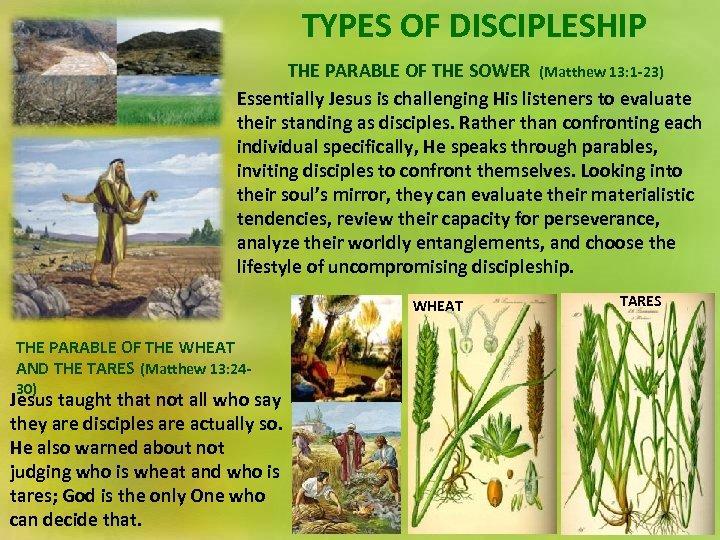 DISCIPLING THROUGH METAPHOR Lesson 2 for January 11
