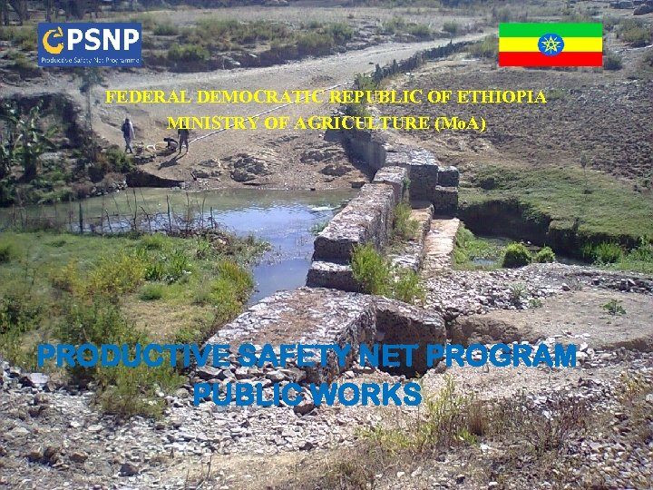 FEDERAL DEMOCRATIC REPUBLIC OF ETHIOPIA MINISTRY OF AGRICULTURE
