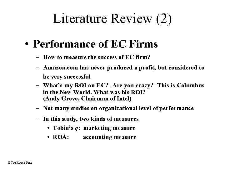Literature Review (2) • Performance of EC Firms – How to measure the success