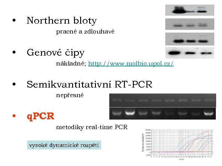 • Northern bloty pracné a zdlouhavé • Genové čipy nákladné; http: //www. molbio.