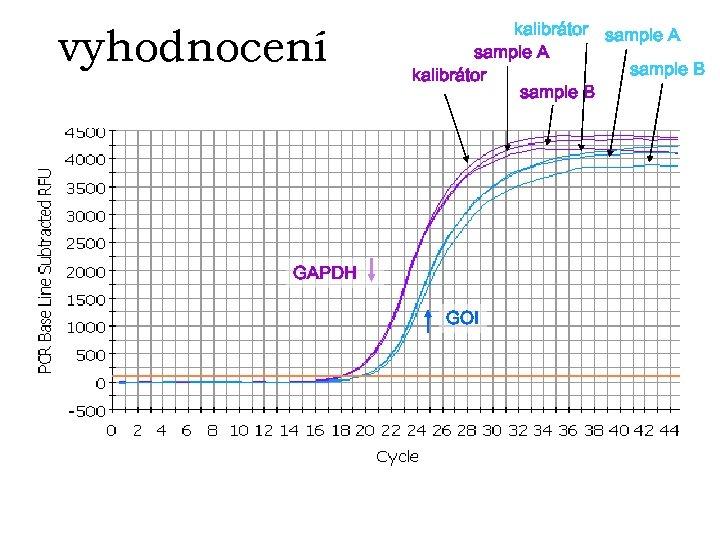 vyhodnocení kalibrátor sample A sample B kalibrátor sample B GAPDH GOI