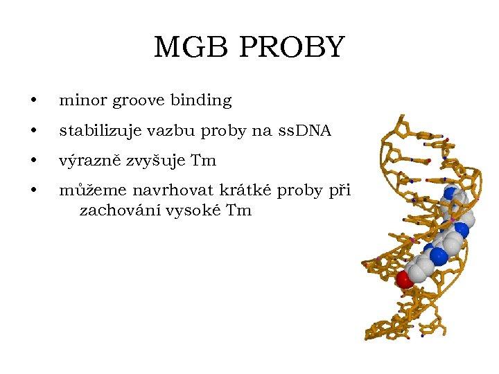 MGB PROBY • minor groove binding • stabilizuje vazbu proby na ss. DNA •