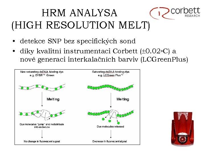 HRM ANALYSA (HIGH RESOLUTION MELT) • detekce SNP bez specifických sond • díky kvalitní
