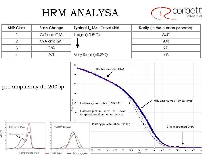 HRM ANALYSA pro amplikony do 200 bp