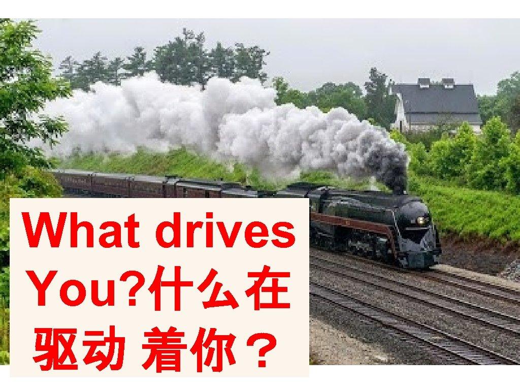 What drives You? 什么在 驱动 着你?