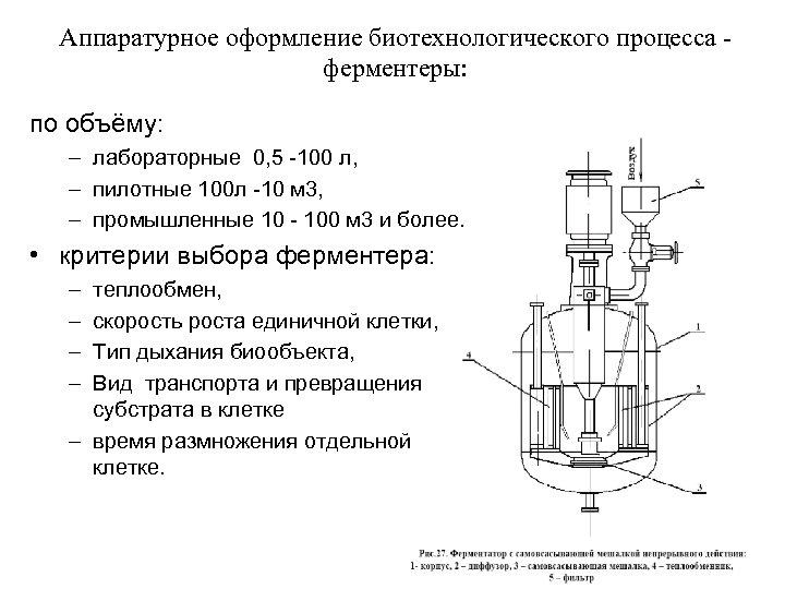 Аппаратурное оформление биотехнологического процесса ферментеры: по объёму: – лабораторные 0, 5 -100 л, –