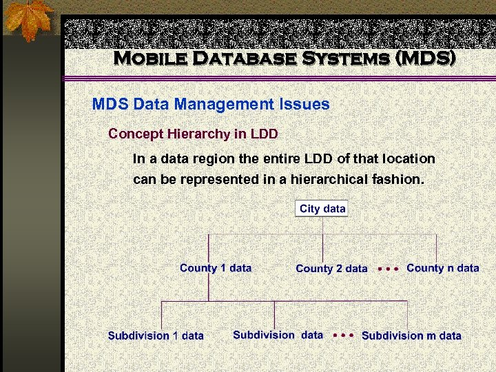 Mobile Database Systems (MDS) MDS Data Management Issues Concept Hierarchy in LDD In a