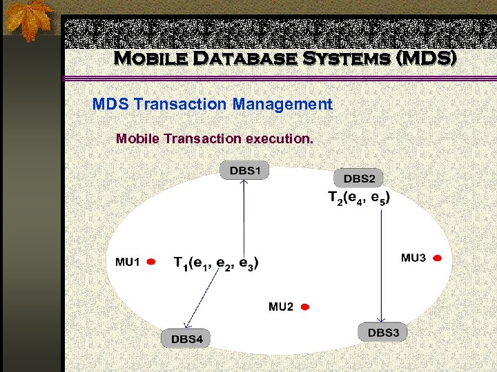 Mobile Database Systems (MDS) MDS Transaction Management Mobile Transaction execution.