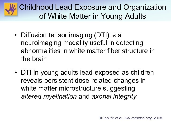 Childhood Lead Exposure and Organization of White Matter in Young Adults • Diffusion tensor