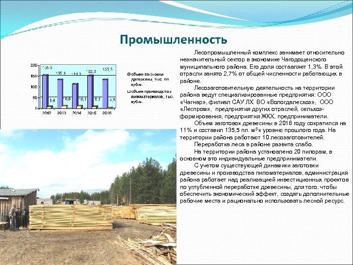 Промышленность Лесопромышленный комплекс занимает относительно незначительный сектор в экономике Чагодощенского муниципального района. Его доля