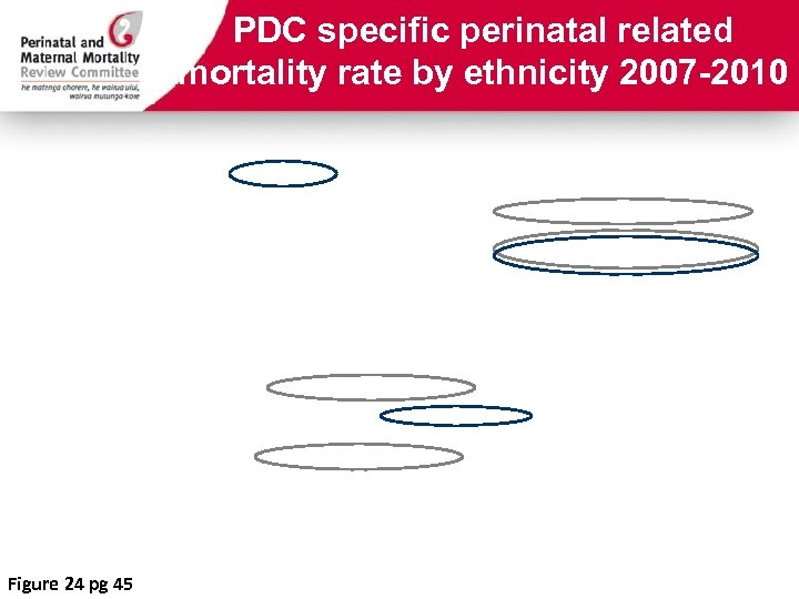 PDC specific perinatal related mortality rate by ethnicity 2007 -2010 Figure 24 pg 45
