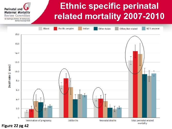 Ethnic specific perinatal related mortality 2007 -2010 Figure 22 pg 42