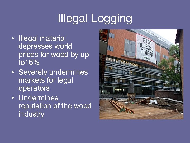Illegal Logging • Illegal material depresses world prices for wood by up to 16%