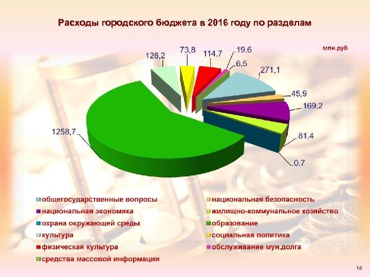 Расходы городского бюджета в 2016 году по разделам 18