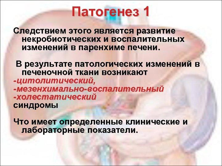 Патогенез 1 Следствием этого является развитие некробиотических и воспалительных изменений в паренхиме печени. В