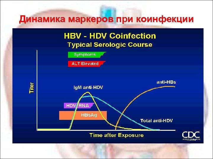 Динамика маркеров при коинфекции