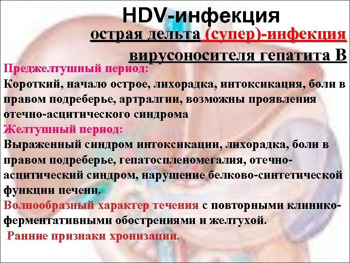 HDV-инфекция острая дельта (супер)-инфекция вирусоносителя гепатита В В Преджелтушный период: Короткий, начало острое, лихорадка,