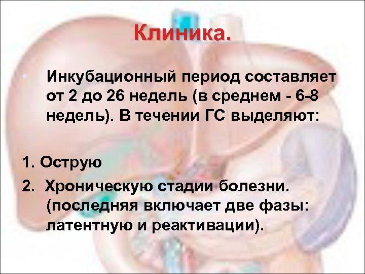 Клиника. • Инкубационный период составляет от 2 до 26 недель (в среднем - 6