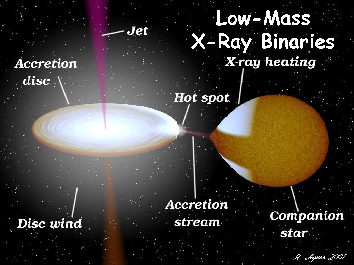 Low-Mass X-Ray Binaries
