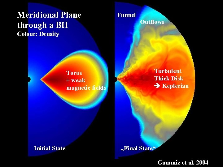 Meridional Plane through a BH Funnel Outflows Colour: Density Torus + weak magnetic fields