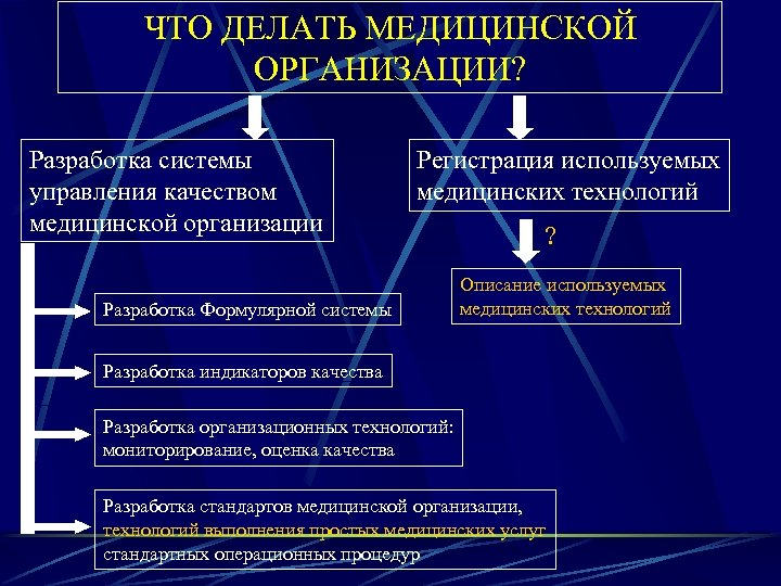 ЧТО ДЕЛАТЬ МЕДИЦИНСКОЙ ОРГАНИЗАЦИИ? Разработка системы управления качеством медицинской организации Регистрация используемых медицинских технологий