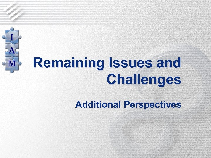 Remaining Issues and Challenges Additional Perspectives