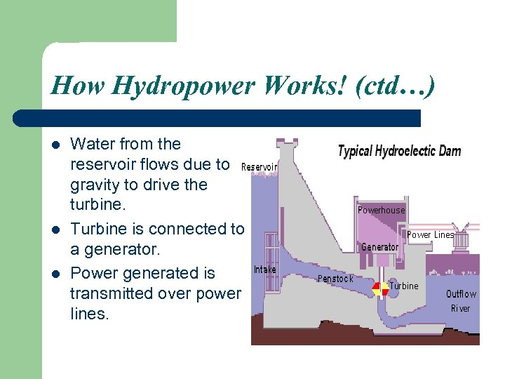 How Hydropower Works! (ctd…) l l l Water from the reservoir flows due to