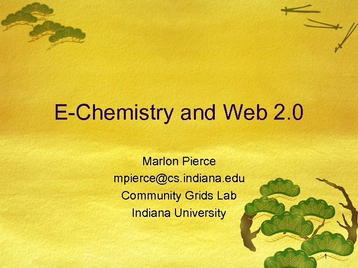 E-Chemistry and Web 2. 0 Marlon Pierce mpierce@cs. indiana. edu Community Grids Lab Indiana