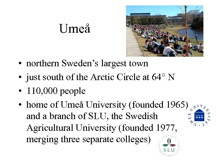 Umeå • • northern Sweden's largest town just south of the Arctic Circle at