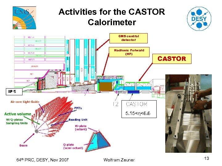 Activities for the CASTOR Calorimeter CMS central detector Hadronic Forward (HF) CASTOR IP 5