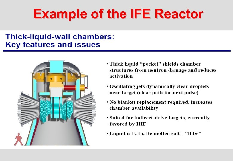 Example of the IFE Reactor