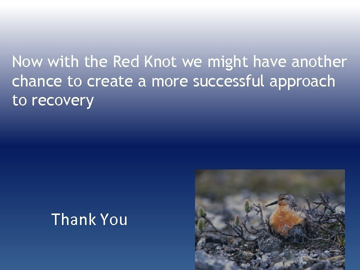 Now with the Red Knot we might have another chance to create a more