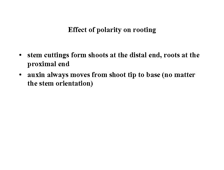 Effect of polarity on rooting • stem cuttings form shoots at the distal end,