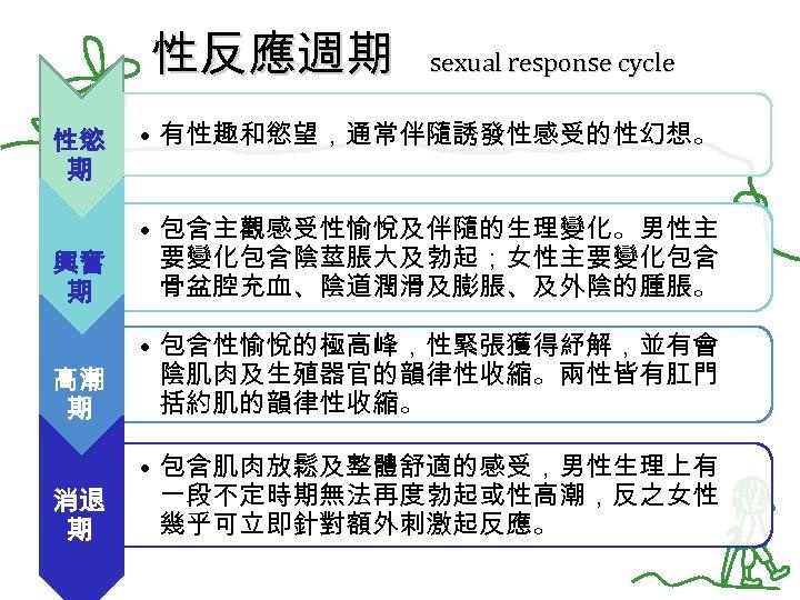 性反應週期 sexual response cycle 性慾 期 • 有性趣和慾望,通常伴隨誘發性感受的性幻想。 興奮 期 • 包含主觀感受性愉悅及伴隨的生理變化。男性主 要變化包含陰莖脹大及勃起;女性主要變化包含