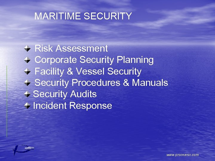 MARITIME SECURITY Risk Assessment Corporate Security Planning Facility & Vessel Security Procedures & Manuals