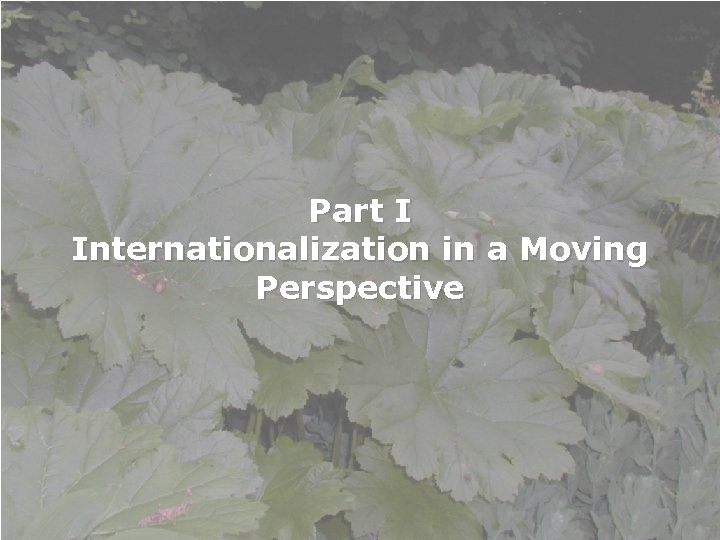 Part I Internationalization in a Moving Perspective International Week Tallinn Health Care College