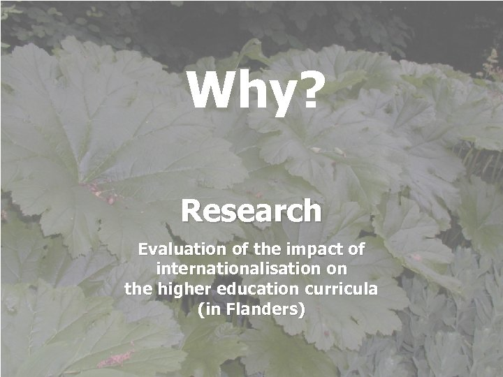 Why? Research Evaluation of the impact of internationalisation on the higher education curricula (in