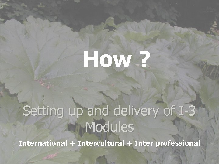 How ? Setting up and delivery of I-3 Modules International + Intercultural + Inter