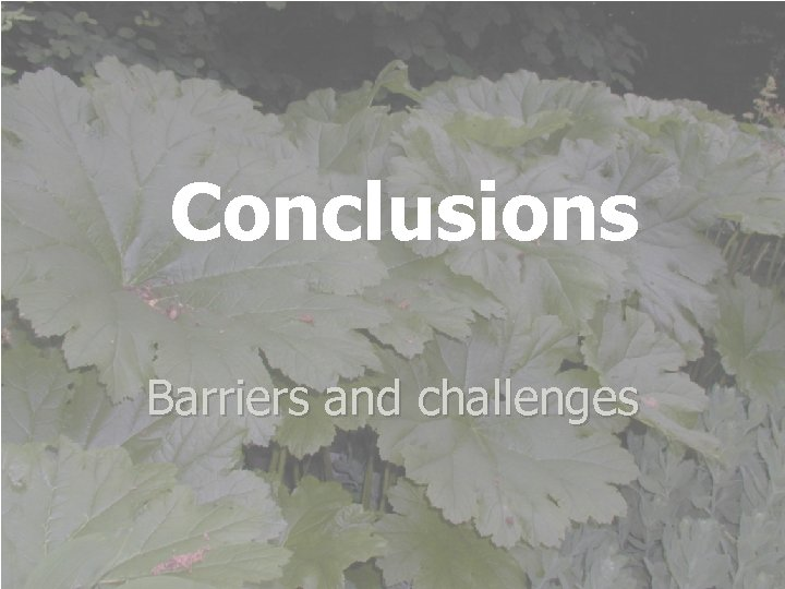 Conclusions Barriers and challenges International Week Tallinn Health Care College