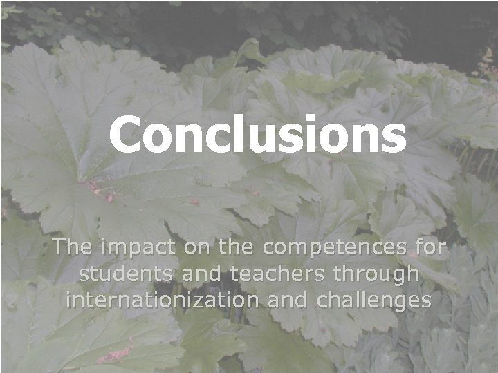 Conclusions The impact on the competences for students and teachers through internationization and challenges