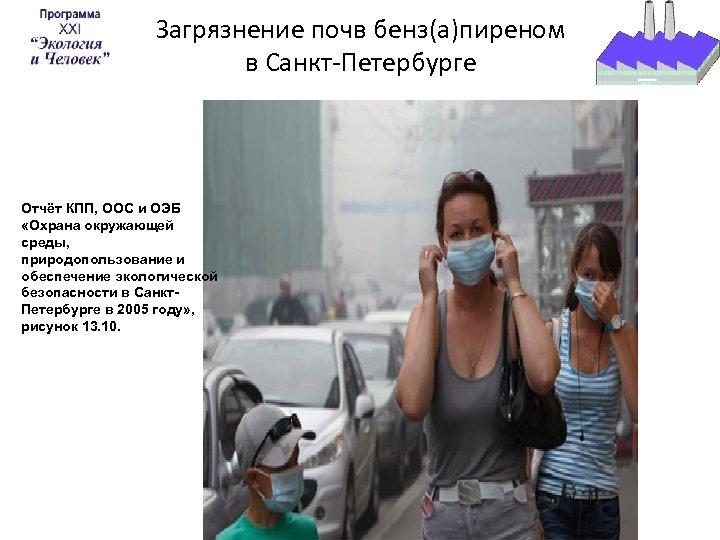 Загрязнение почв бенз(а)пиреном в Санкт-Петербурге Отчёт КПП, ООС и ОЭБ «Охрана окружающей среды, природопользование