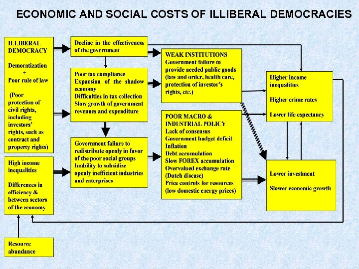 ECONOMIC AND SOCIAL COSTS OF ILLIBERAL DEMOCRACIES