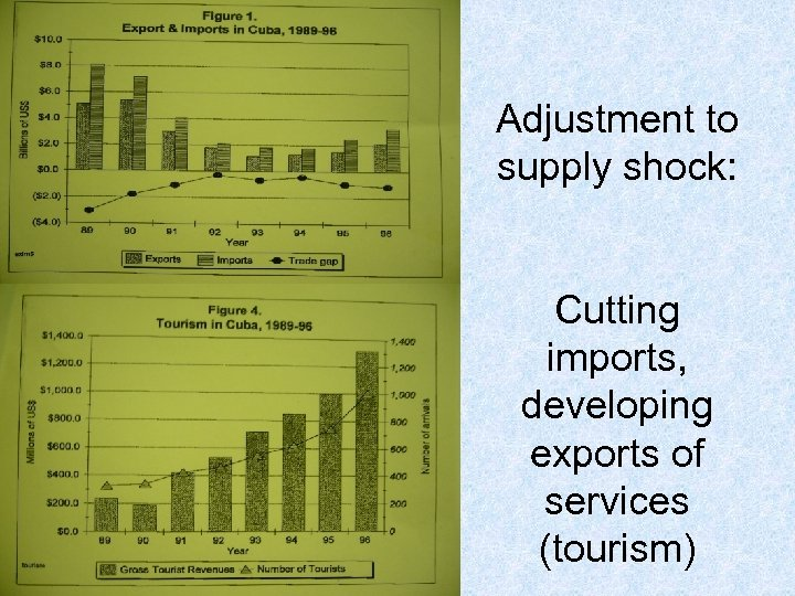 Adjustment to supply shock: Cutting imports, developing exports of services (tourism)