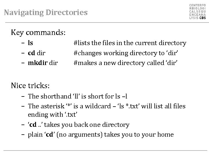 Navigating Directories Key commands: – ls – cd dir – mkdir #lists the files
