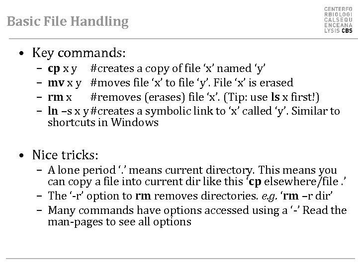 Basic File Handling • Key commands: – – cp x y #creates a copy