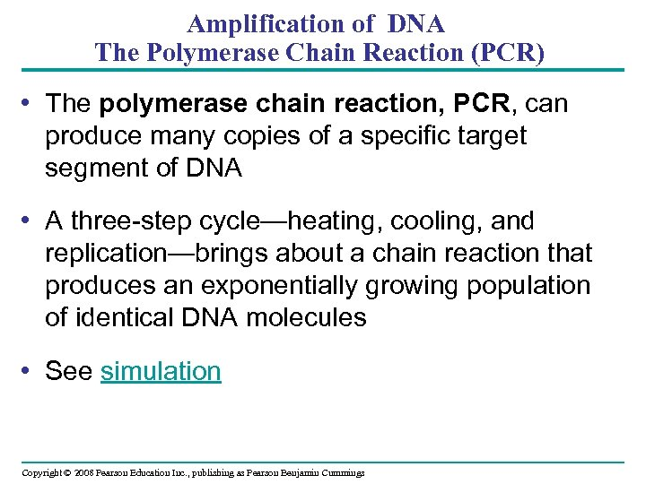 Amplification of DNA The Polymerase Chain Reaction (PCR) • The polymerase chain reaction, PCR,