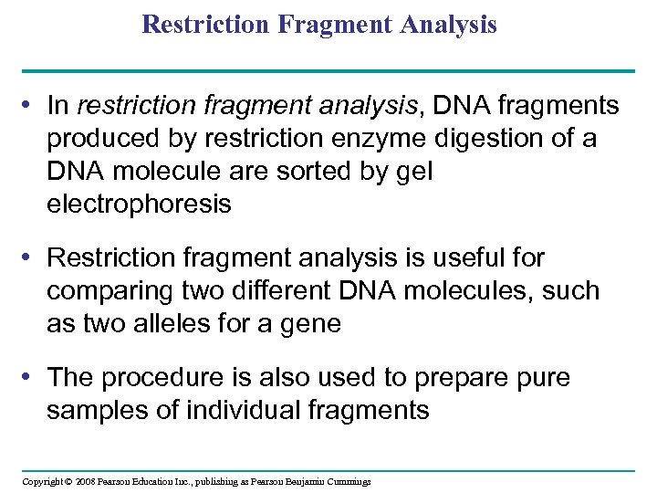 Restriction Fragment Analysis • In restriction fragment analysis, DNA fragments produced by restriction enzyme