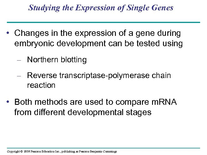 Studying the Expression of Single Genes • Changes in the expression of a gene