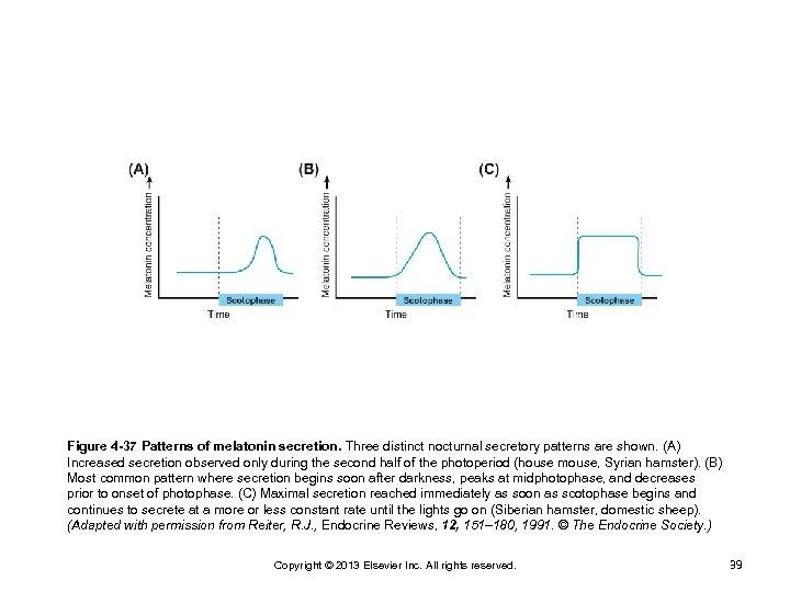 Figure 4 -37 Patterns of melatonin secretion. Three distinct nocturnal secretory patterns are shown.