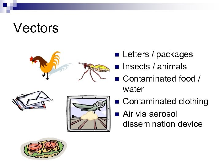 Vectors n n n Letters / packages Insects / animals Contaminated food / water
